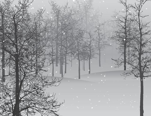 zimní krajina.png